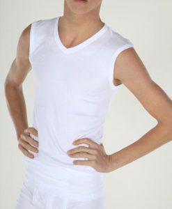 Heren T-shirt Mouwloos V-hals Wit