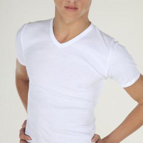 Heren T-shirt V-hals Wit