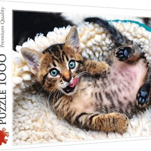 Puzzel Happy Kitten: 1000 stukjes (10448)